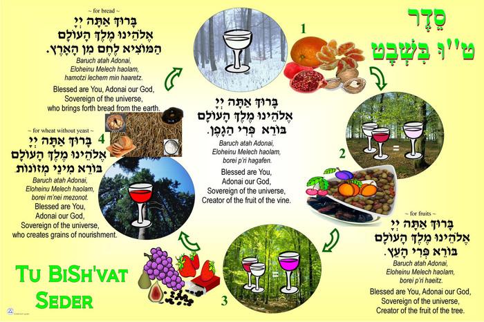 Tu BiSh'vat Seder Bulletin Board