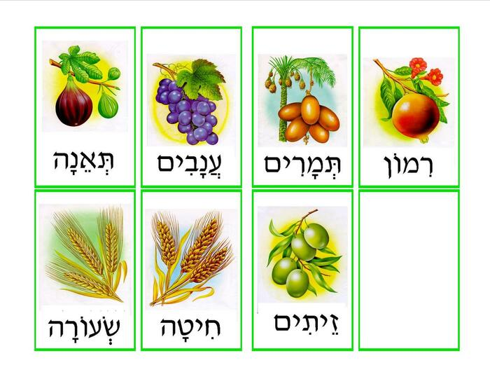 Shivat Haminim Memory Game