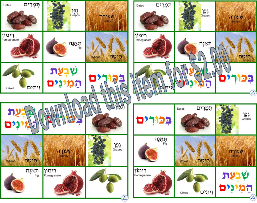 Shavuot Lotto (a downloadable item)