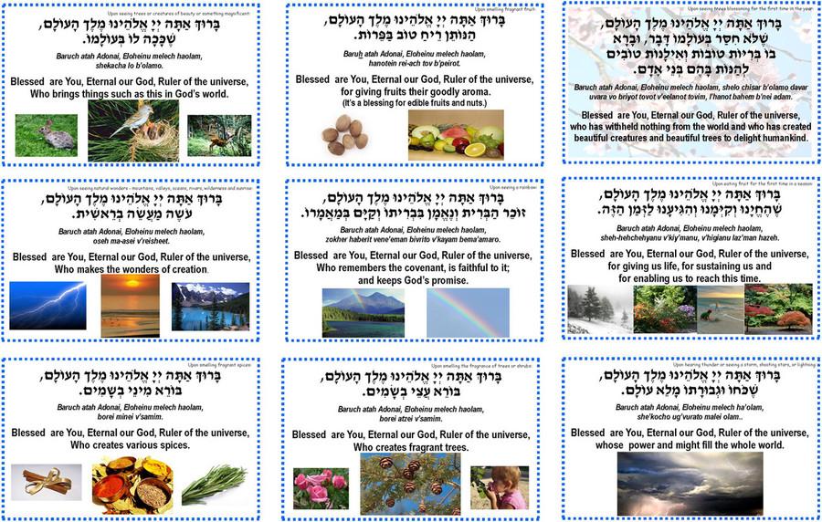 Nature Prayer Cards