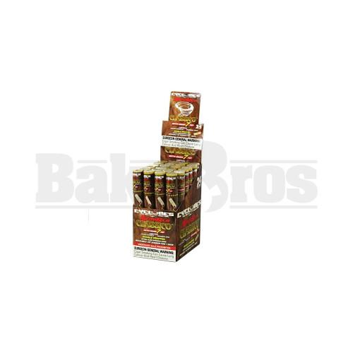 CLASSICO Pack of 24