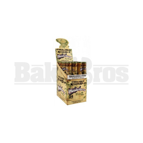 CYCLONES DANK 7 TIPS 4 PER TUBE WONDERBERRY Pack of 24