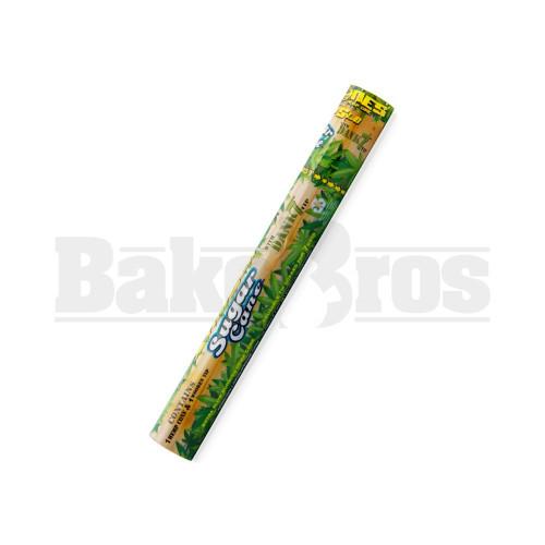SUGAR CANE Pack of 1
