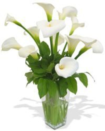 Calla Lilly Vase