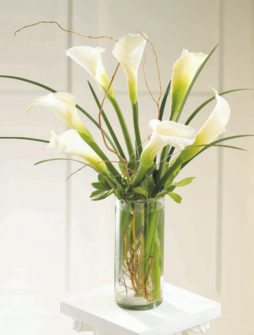 Simple Sophistication Arrangement
