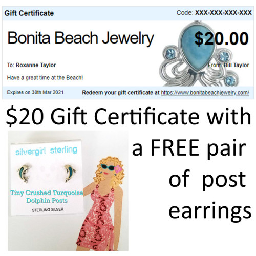 $20 Gift Certificate w/ FREE Post Earrings
