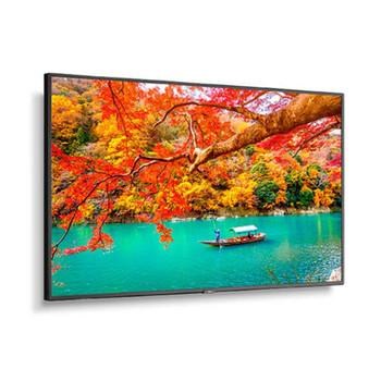 "NEC MA551 49"" Wide Color Gamut 4K UHD Professional Display/ 3840x2160 / 500 cd/m2"