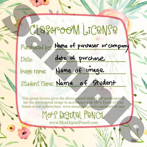 Classroom License