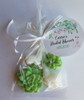 Llama & Succulent Party Favors for baby shower, Wedding Favors