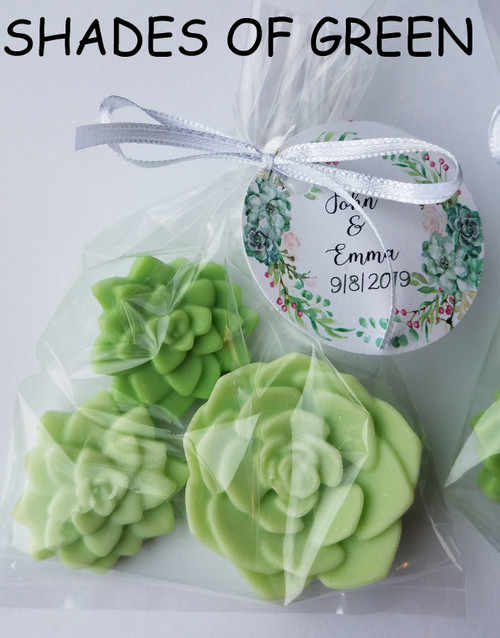 THREE SHADES OF GREEN SUCCULENT BRIDAL SHOWER FAVORS