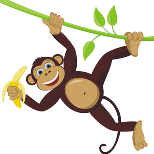 Monkey Farts Fragrance Oil