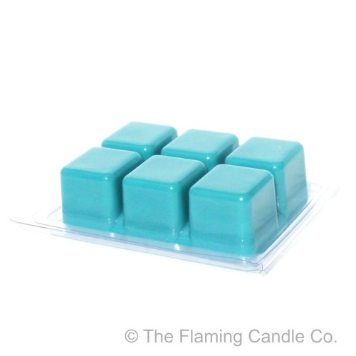 Wax Melt Clamshell Molds