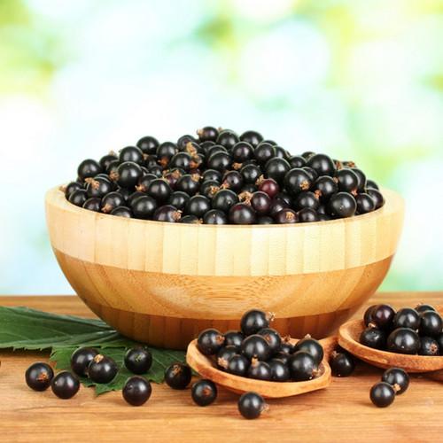 Black Currant Fragrance Oil