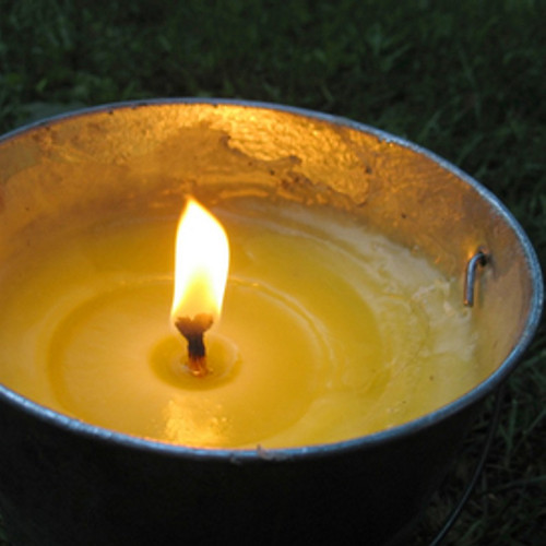 Citronella Fragrance Oil