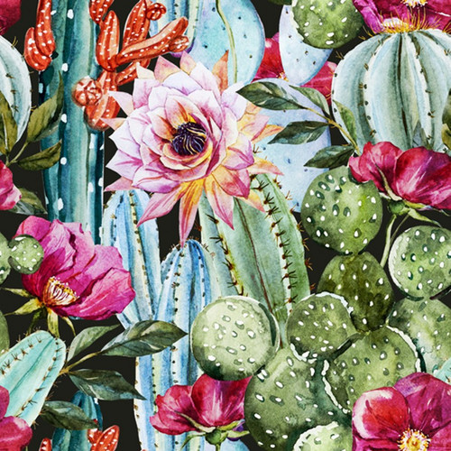 Baja Cactus Blossom (Type) Fragrance Oil