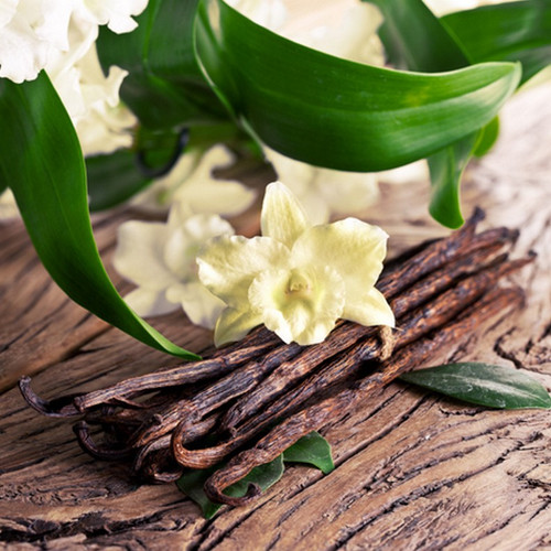Sandalwood Vanilla Fragrance Oil