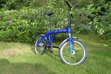 8H blue garden