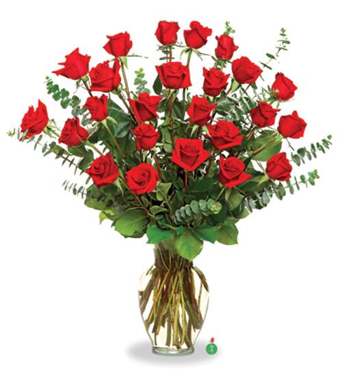 Two Dozen Red Roses