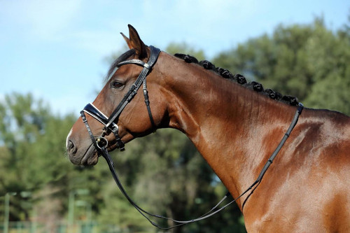 Bridle2Fit Custom Weymouth Bridle