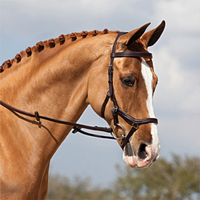 Micklem Competiton bridle in Brown