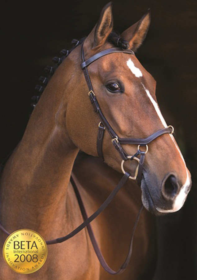 The award winning Micklem Multi Bridle