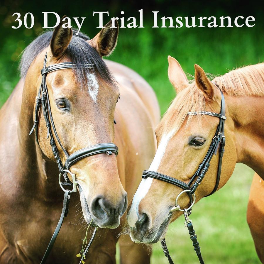 30 Day Trial - Bit Insurance