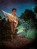 """""""The Sower"""" (Psalms 97:11) - Fine Art Editions"""