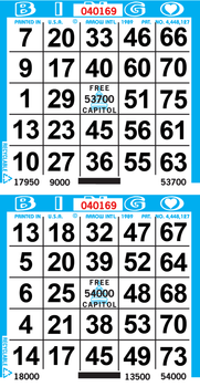 2on Bingo Paper By The Case