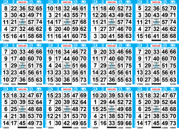 12on Border Bingo Paper By the Case
