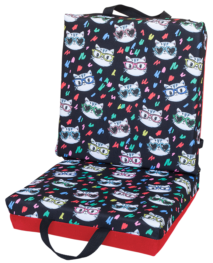Cats With Glasses Double Cushion