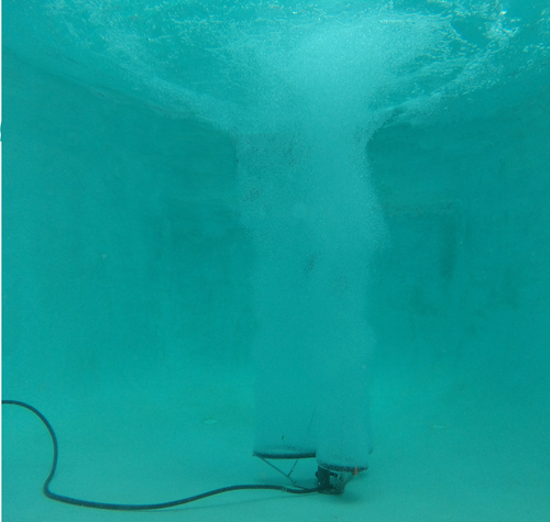 Can-Air SS Diffuser - Underwater