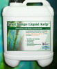 NTS liquid Kelp suitable for compost tea brewing