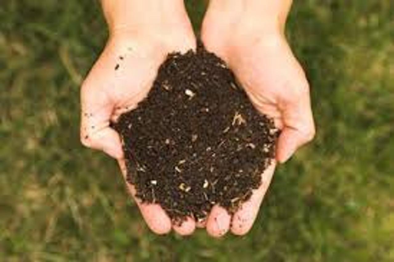 happy Compost
