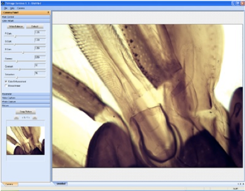 Windows:TS VIew or IS Capture Software with Image Analysis
