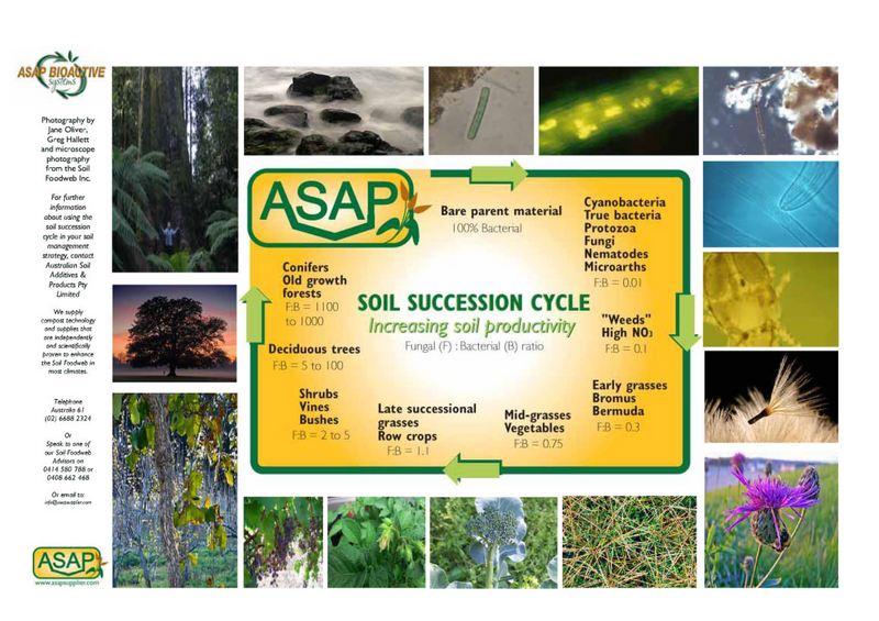 asap-successiondiag-photos.jpg