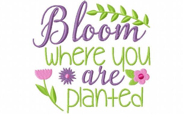 Bloom Where You Are Planted Inspirational Word Art MACHINE EMBROIDERY DESIGN 4X4, 5X7 & 6X10