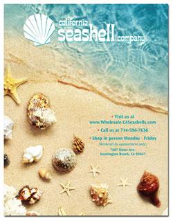 casea-catalog-cover-thumbnail-small.jpg