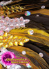 CHARISMATICO Amber And Iridescent Crystal Studded Yellow Feather Cabaret Backpack Collar