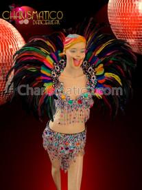 Multiple color rainbow samba bra, belt and collar costume set