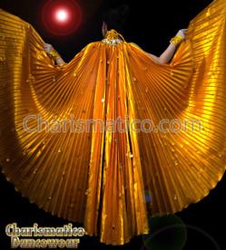 Gold Burslesque Belly Dance Bra & Large Iris Fan Wing Skirt