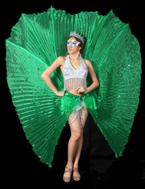 Green Eye Catchy Cabaret Pleaded Show Time Circular Wing Skirt