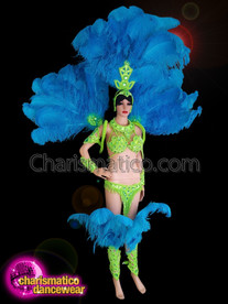 CHARISMATICO Blue And Green Samba Ostrich Costume Set For Rio Carnival