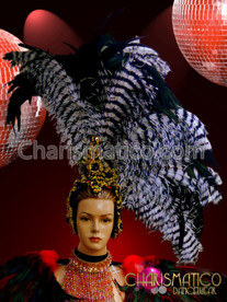 Charismatico Asymmetrical Gold Sequined Black and White Ostrich Feather Headdress