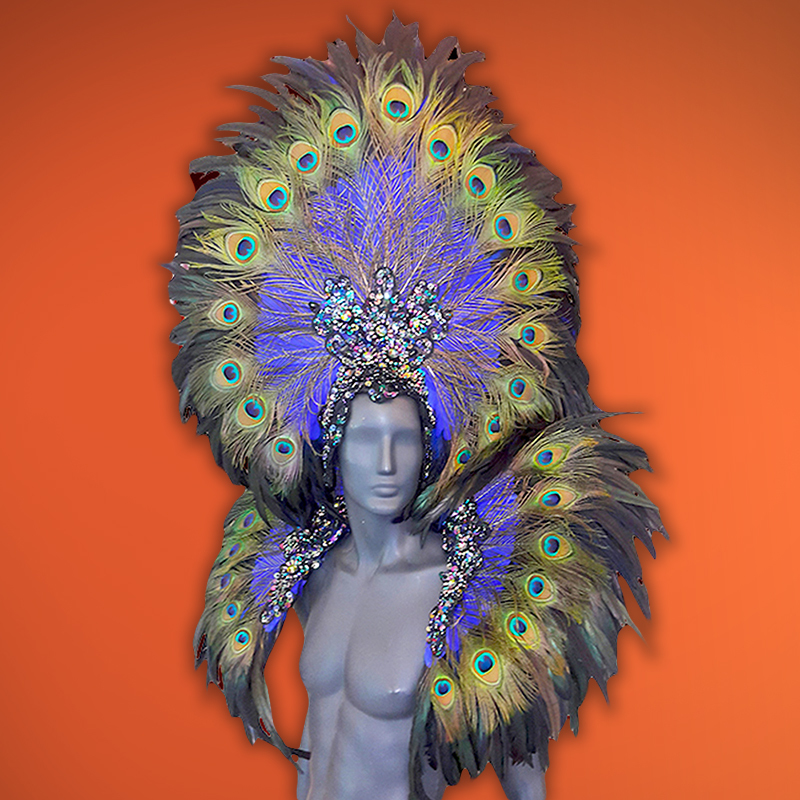 Peacock Headdress & Backpack Set