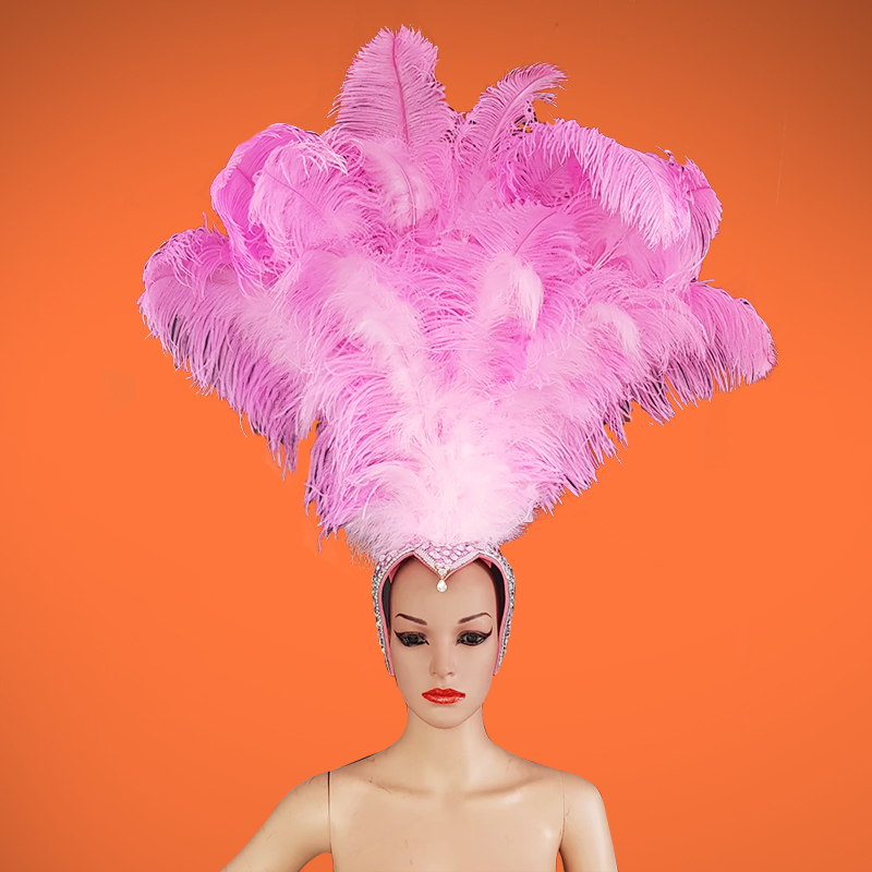 Ostrich Headdress