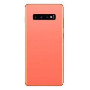 Samsung S10 Plus Back Door Flamingo Pink