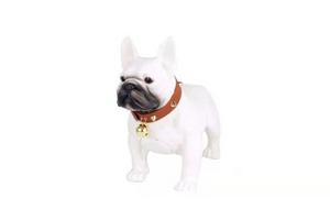 M209 Large Bull Dog Bluetooth Speaker White