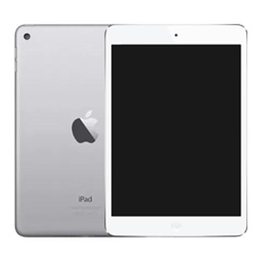 Apple iPad Mini (2019)  Screen Protector