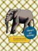 Illustrated Elephant Printable