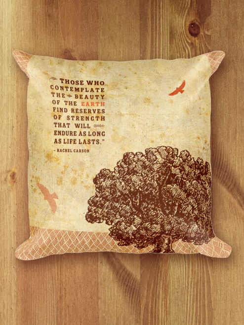 Reserves of Strength Pillow